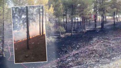 Photo of Urfa'daki Orman yangını kontrol altına alındı