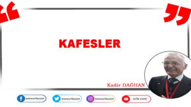 Photo of Kafesler
