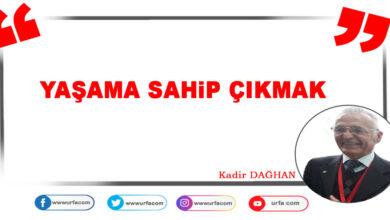 Photo of Yaşama Sahip Çıkmak
