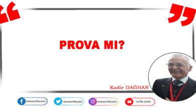 Photo of Prova Mı?