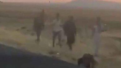 Photo of Kaçak Afganlar Şanlıurfa'da görüldü