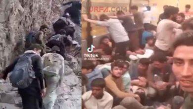 Photo of Urfa'dan Ankara'ya Tır Dorseleriyle Afgan Kaçakçılığı