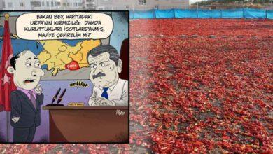 Photo of Urfa'nın kırmızılığı karikatüre konu oldu