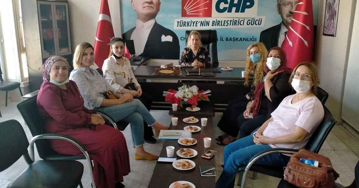CHP Kadın Kolları Urfa'da Saha Çalışmalarını Sürdürüyor