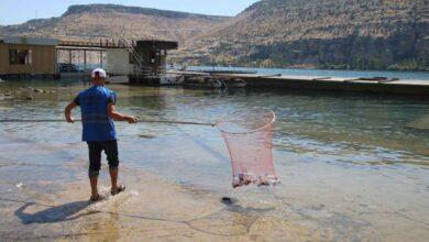 Photo of Halfeti'de Su Yüzeyinde Biriken Atıklar Temizlendi