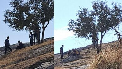 Photo of Urfa'da 24 yaşındaki genç kendini ağaca astı