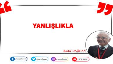 Photo of Yanlışlıkla