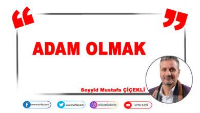 Photo of Adam Olmak