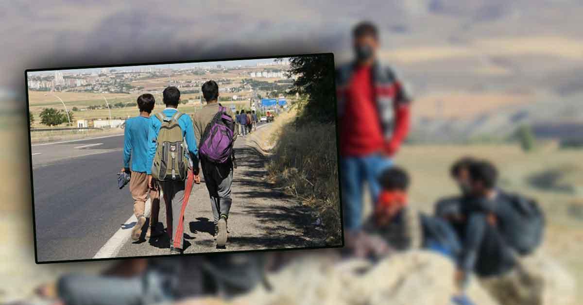 Afganlar Urfa'ya Akın Ediyor!