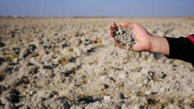 Photo of Kuraklıktan etkilenen çiftçilere destek verilecek