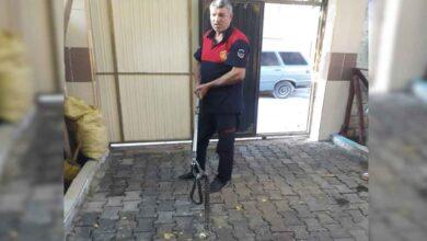 Photo of Urfa'da Eve Giren Yılanı İtfaiye Ekipleri Çıkardı