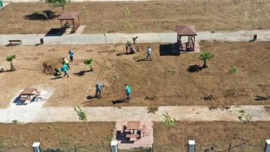 Photo of Harran Kent Parkı Yeşillendiriliyor